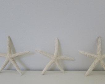 White Starfish Set of Three Medium