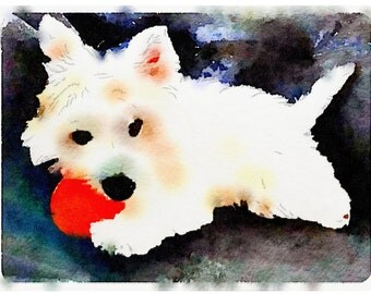 Westie, West Highland Terrier, Dog, Beautiful, Sweet, Watercolor, Art Print