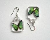 Butterfly Earrings - Enchanted Petites - green, sterling silver, flutter, Nature inspired, minimal, modern, casual everyday, resin, gift