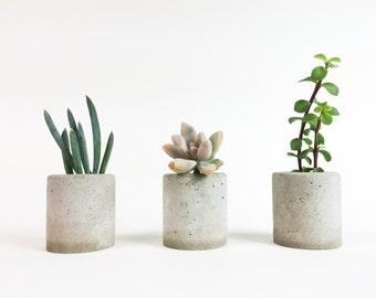 Set of 3 - Mini Cylindrical Concrete Planter - Concrete Vessel - Concrete Succulent Vase
