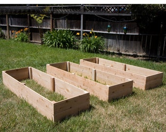 Raised Garden Bed Planter by Living Green Planters