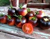 Indigo Rose Tomato Seeds Purple Open Pollinated Short Indeterminate High Antioxidant Variety Excellent Sweet Flavor Rare Seeds