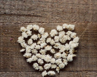 Flower art, romantic art, love, heart art print, rustic art, girly art, fine art photo, nursery wall art, 8x10,11x14, brown, white