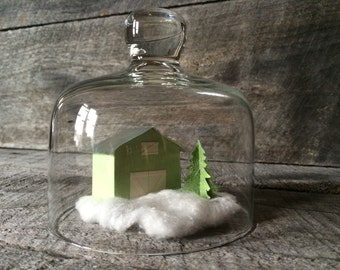 Glass Dome with Handle - Terrarium