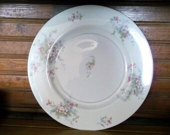 Haviland Apple Blossom Dinner Plates -Dinner Plate -Apple Blossom Dinner Plates Haviland Dinner Plate-Theodore Haviland Dinner Plate - Plate