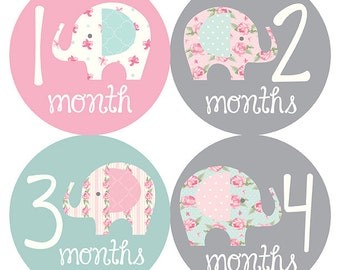 Stickers, Baby Belly Stickers, Monthly Baby Stickers Girl, Month ...