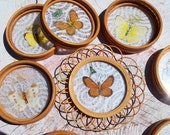 Butterfly Coasters set of 8 - Vintage pressed butterflies and moths