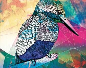 Kingfisher - Giclée art print on HAHNEMUHLE photo rag paper