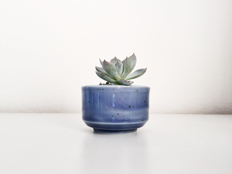 petite mini ceramic pot succulent plant succulent planter. Black Bedroom Furniture Sets. Home Design Ideas