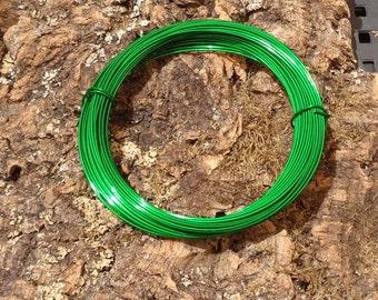 Tillandsia Wire-Green