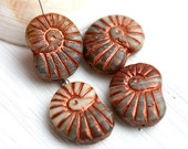 Nautilus Czech beads, glass seashell, Mixed Blue Beige copper inlays, ammonite fossil, large - 14x17mm - 4Pc - 0677