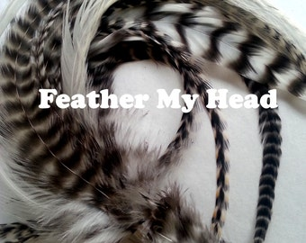 "15 Pc Wide Accent Feather Hair Extenions 7"" to 11"" Inches Long Natural Grizzly / White"