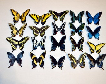 Butterfly Magnets Set of 20 Insects Refrigerator Magnets Home Decor Handmade by Doug Walpus