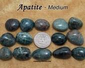 Blue Apatite (medium) tumbled stone crystals