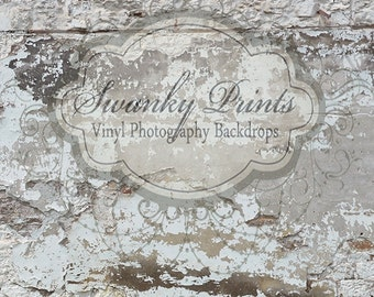 SWANKY PRINTS Original 2ft x 2ft Torn Up Wall / Vinyl Photography Backdrop