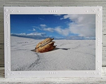Yucca Seed Pod in the Desert Photo Greeting Card, Sand Dunes and Sky, Fine Art Photography, Nature Still Life Notecard, All Occasion Card