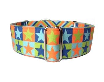"All-Star Dog Collar - 1"" or 1.5"" Adjustable Martingale Collar or Buckle Stars and Chevron Dog Collar"