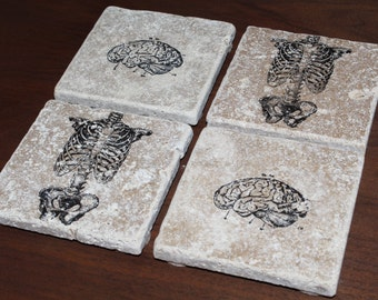 Set of 4 Human Anatomy Torso And Brain Tumbled Marble Coasters