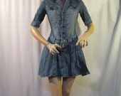 "size small mini denim dress, chest pockets with pocket flaps, V neckline, 11"" sleeves, full skirt, skirt panels, drop waistline......G."