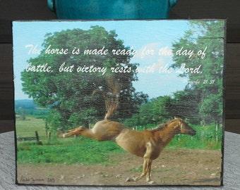 SALE 8x10 Canvas Photograph Horse Quote Print