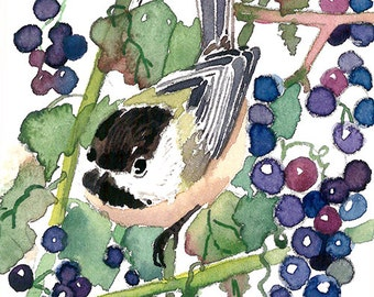 ACEO Limited Edition 3/25-  Chickadee in the wild grapes, Bird art print, Gift for her, Bird lovers, Home deco idea
