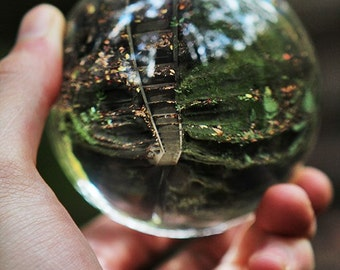Upside Down Path 13x19 Fine Art Photography Crystal Ball Cement Staircase Greenery Lush Crisp Winding Lost Found Hocking Hills Ohio