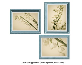 Flower Photography, Lily of the Valley, Photographs, Photos, Print Set, Ivory, Cream, Ecru, Shabby Chic Wall Art, Ethereal Nature Decor