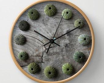 Sea Urchins, photographic clock, driftwood, aqua, seashells, grey, wood, distressed, shabby, rustic, green, spheres, texture, sea, Greece