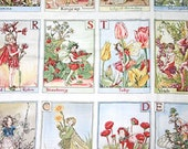 Flower Fairy Alphabet Printed Cotton Quilting Fabric Panel Michael Miller
