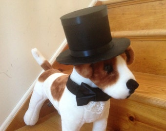 Formal Dog Wedding Outfit for the Groom