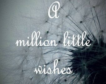 A Million Little Wishes Dandelion Typography Matted Picture Art Print A684 blue  black white