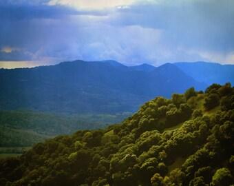 "landscape photography print / nature California mountain tree cloud decor art print  / blue green large wall hanging / ""stormy oak canyon"""