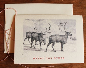 Reindeer Christmas Cards Set of 6 Vintage Print Holiday