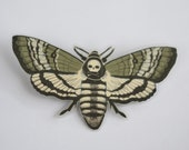 Paper Death's Head Moth Pin