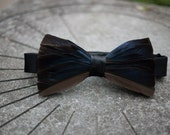 Mallard Duck feather iridescent bow tie