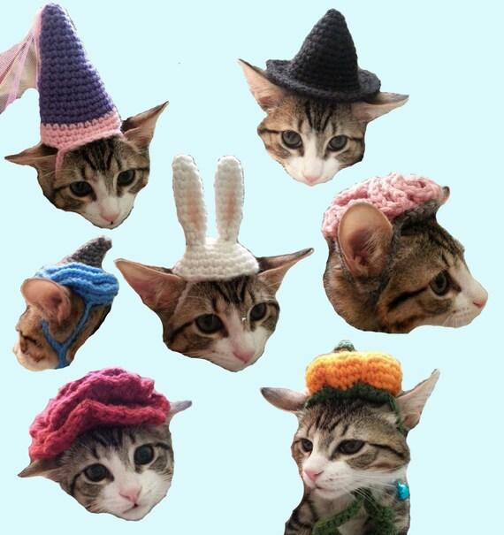 7 Cat Hat Patterns Halloween Costume Brain Pumpkin Witch