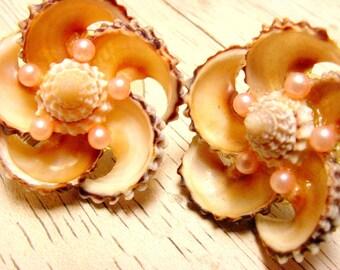 Vintage Screw Back Shell Earrings (retro 50s 60s beach summer sea ocean pink swirl round pin up mermaid halloween cute nature)