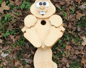 Woodland Squirrel Birdhouse