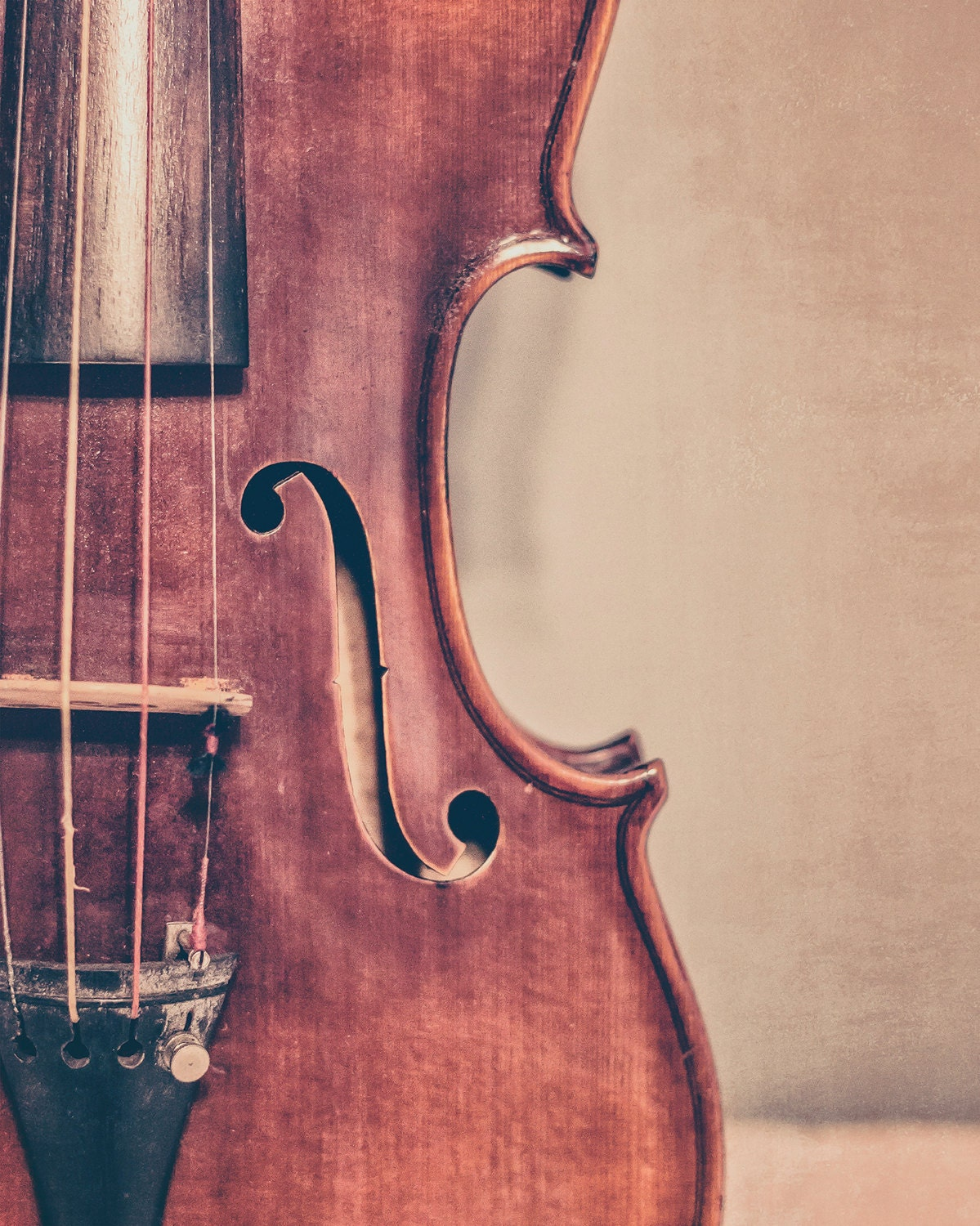 Violin Fine Art Photography Fiddle Photo Musical Instrument