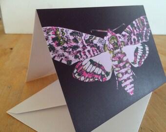 Moth art card