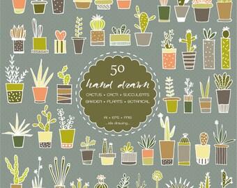 50 Hand Drawn Cactus Digital Clip Art - Succulents - Cacti Clip Art - Cactus Illustrations - Cactaceae - Botanicals - Plants -  Chalkboard