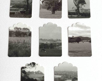 Set of 8 black and white photo tags, photographs of landscapes, Australia gum trees