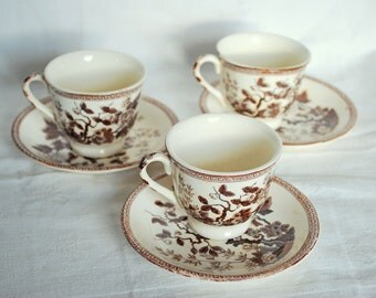 Vintage-Nasco Indian Tree-Cup and saucers