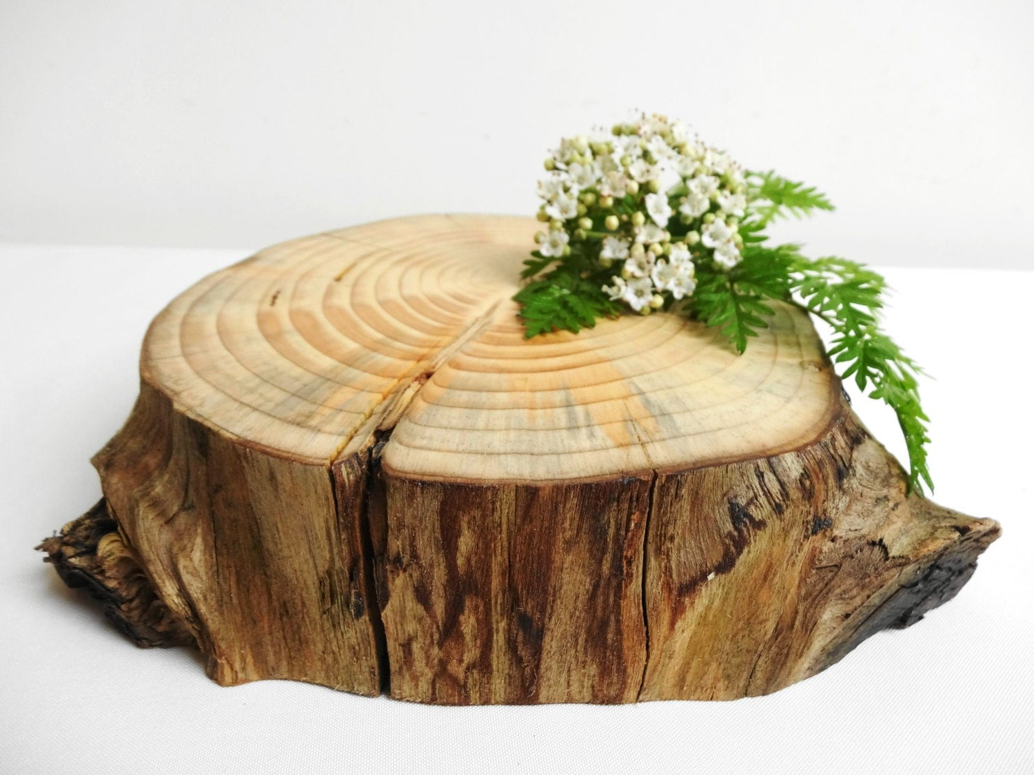 66 5 tree stump stump cake stand charger wood by. Black Bedroom Furniture Sets. Home Design Ideas