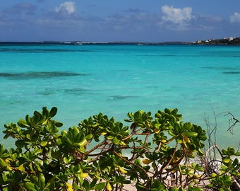 Shoal Bay in Anguilla Caribbean, Ocean Decor, Ocean Photography, Ocean Art, Ocean Print, Caribbean Art, Caribbean Photography