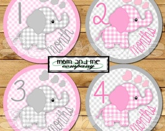 Elephant Baby Girl Monthly Stickers Baby Stickers Baby Shower gift 1- 12 Months onepiece stickers infant month stickers Milestone