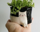 Cat Pot Plant small - PREORDER SHIPS 1ST FEBRUARY