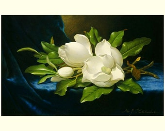 "Giant Magnolias on a Blue Velvet Cloth, 1890, Martin Johnson Heade, 8x10"" Cotton Canvas Print"