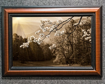 "Framed Smoky Mountains Dogwood Photo in Sepia Chocolate Dark Brown Decor ""A Song Without Words"""
