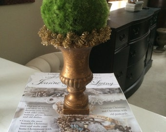 Moss Ball Topiary